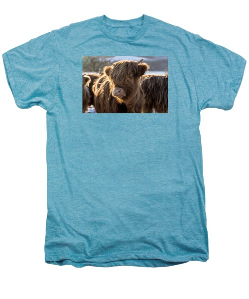 Highland Baby Coo Men's Premium T-Shirt by Jeremy Lavender Photography
