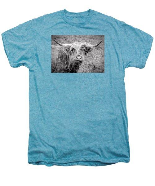 Highland Cow Men's Premium T-Shirt by Jeremy Lavender Photography