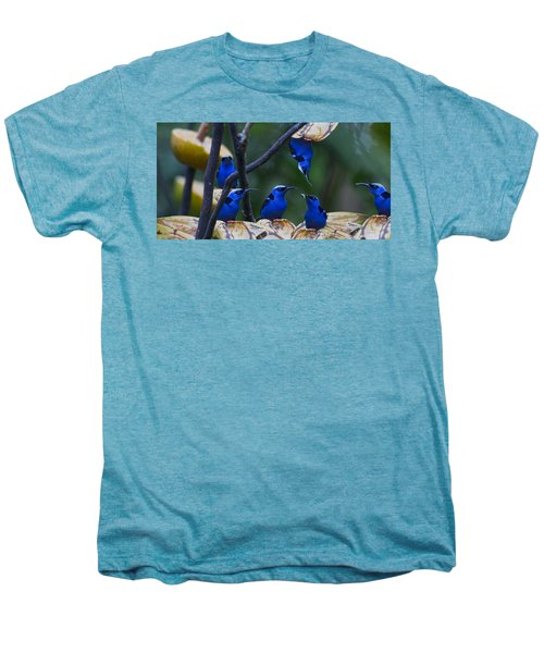 Honeycreeper Men's Premium T-Shirt by Betsy Knapp