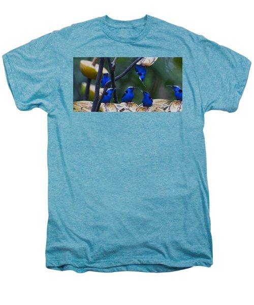 Honeycreeper Men's Premium T-Shirt