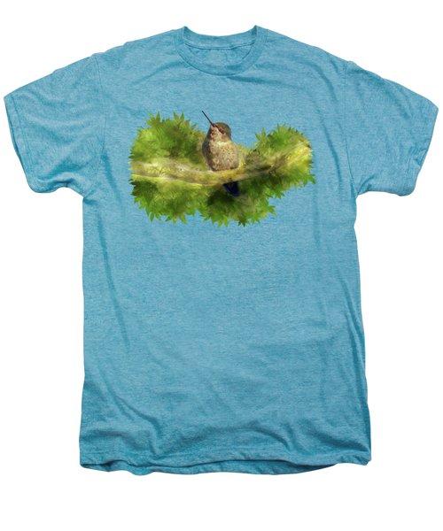 Hummingbird In A Tree Men's Premium T-Shirt