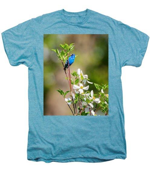 Indigo Bunting In Flowering Dogwood Men's Premium T-Shirt by Bill Wakeley