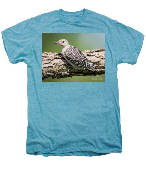 Juvenile Red-bellied Woodpecker Men's Premium T-Shirt by Ricky L Jones