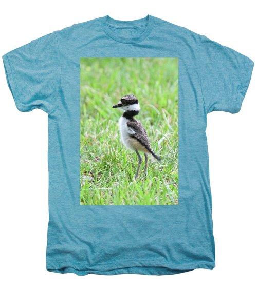 Killdeer Chick 3825 Men's Premium T-Shirt