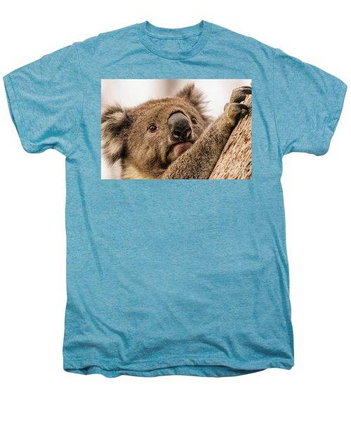 Koala 3 Men's Premium T-Shirt by Werner Padarin