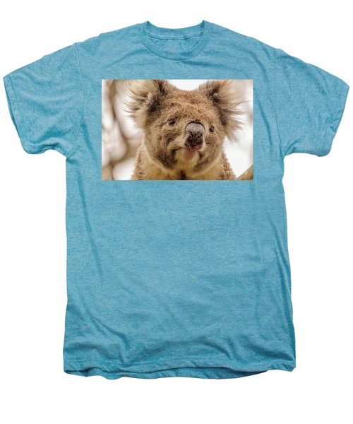 Koala 4 Men's Premium T-Shirt by Werner Padarin
