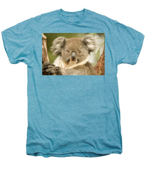 Koala Snack Men's Premium T-Shirt by Mike  Dawson