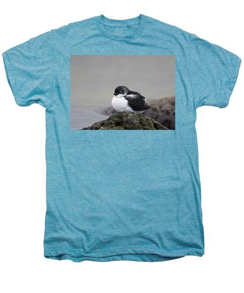 Least Auklet Men's Premium T-Shirt