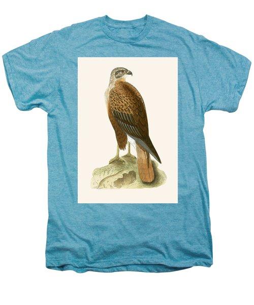 Long Legged Buzzard Men's Premium T-Shirt by English School