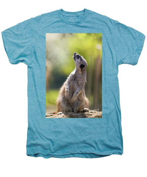 Magical Meerkat Men's Premium T-Shirt