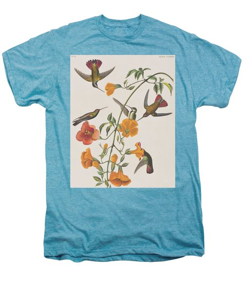 Mango Humming Bird Men's Premium T-Shirt by John James Audubon