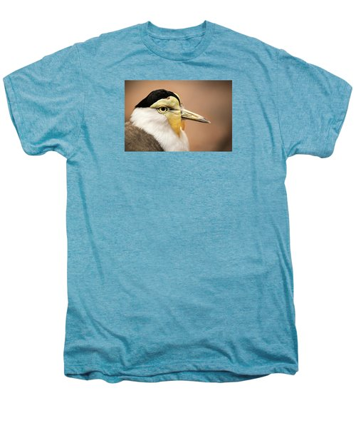Masked Lapwing Men's Premium T-Shirt by Don Johnson