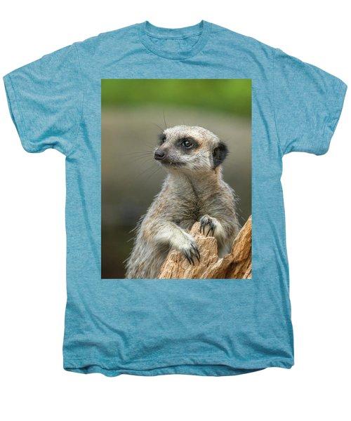Meerkat Model Men's Premium T-Shirt