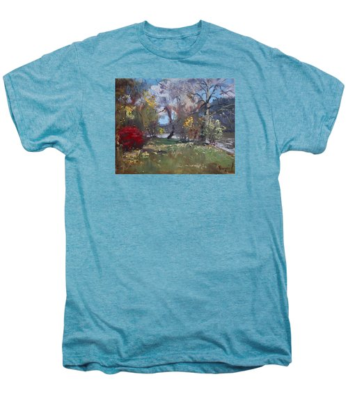 Mixed Weather In A Fall Afternoon Men's Premium T-Shirt