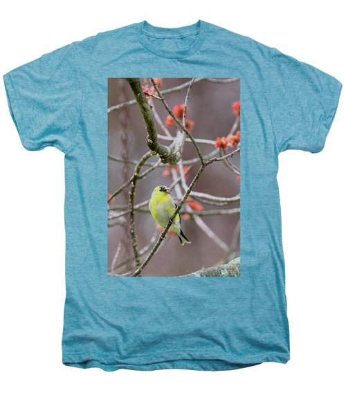 Men's Premium T-Shirt featuring the photograph Molting Gold Finch by Bill Wakeley