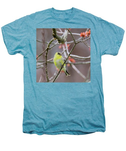 Men's Premium T-Shirt featuring the photograph Molting Gold Finch Square by Bill Wakeley