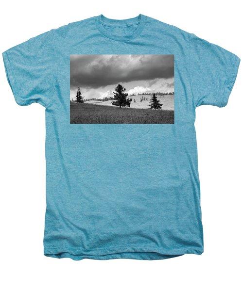 Moody Meadow, Tsenkher, 2016 Men's Premium T-Shirt