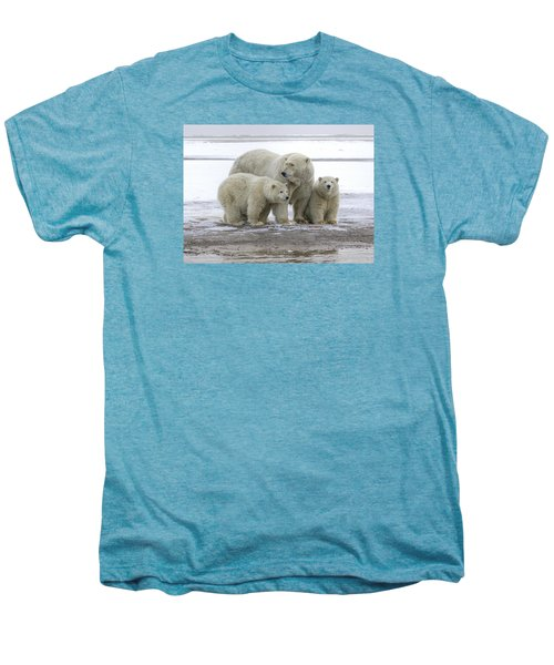 Mother And Cubs In The Arctic Men's Premium T-Shirt