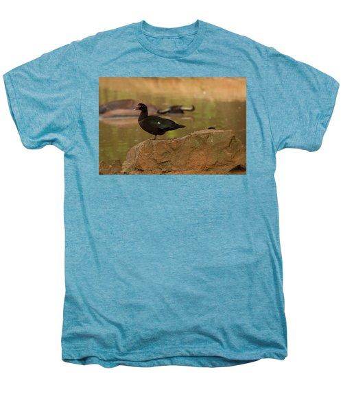 Muscovy Duck Men's Premium T-Shirt
