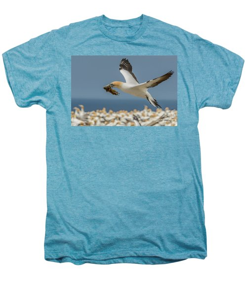 Nest Building Men's Premium T-Shirt