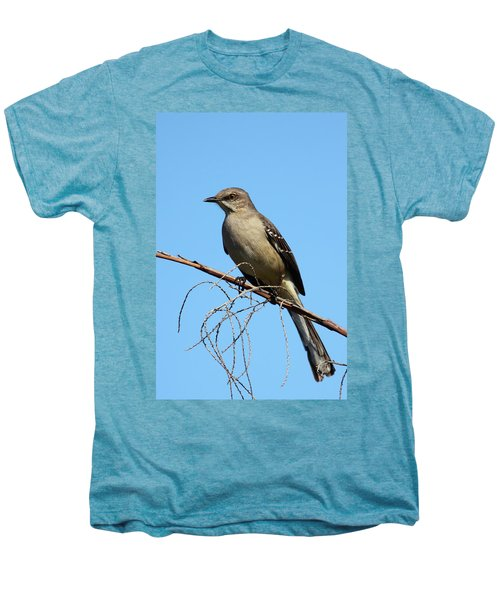 Northern Mockingbird Men's Premium T-Shirt by Bruce J Robinson