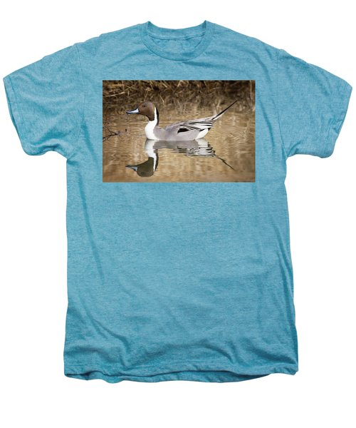 Northern Pintail Drake Men's Premium T-Shirt