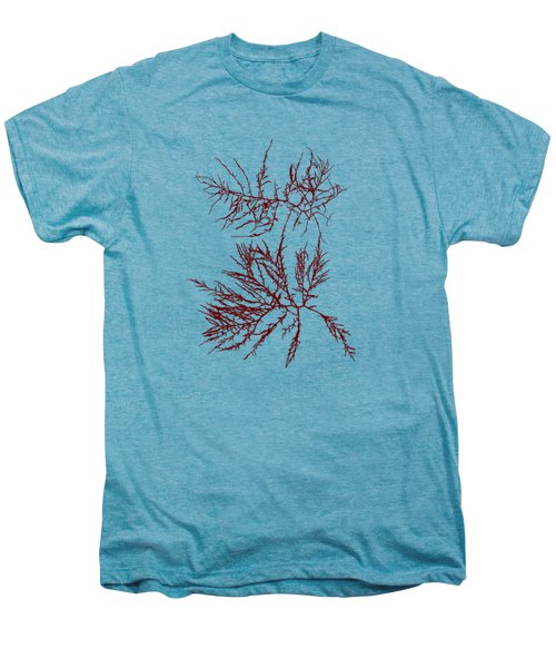 Men's Premium T-Shirt featuring the mixed media Ocean Seaweed Plant Art Laurencia Tenuissima by Christina Rollo