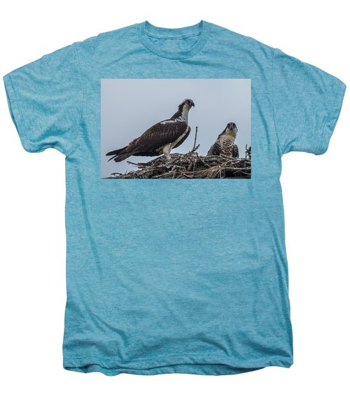 Osprey On A Nest Men's Premium T-Shirt by Paul Freidlund