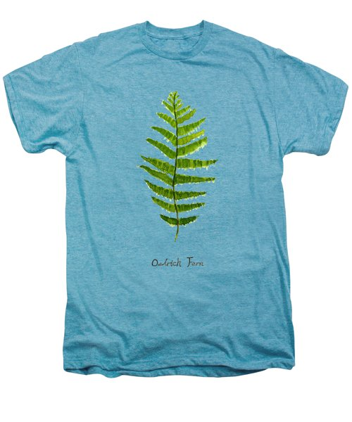 Ostrich Fern Men's Premium T-Shirt by Color Color
