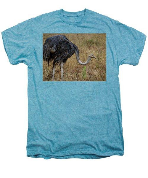 Ostrich In The Grass 2 Men's Premium T-Shirt