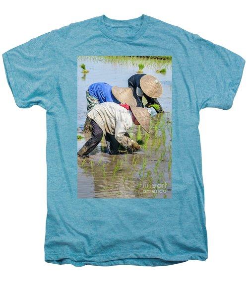 Paddy Field 2 Men's Premium T-Shirt by Werner Padarin