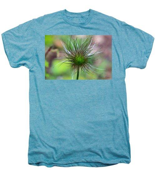 Pasque Fluff Men's Premium T-Shirt
