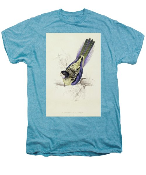 Platycercus Brownii, Or Browns Parakeet Men's Premium T-Shirt by Edward Lear