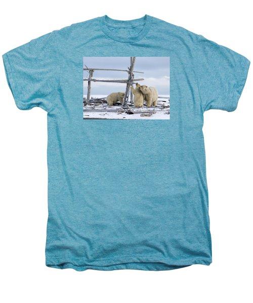 Playtime In The Arctic Men's Premium T-Shirt