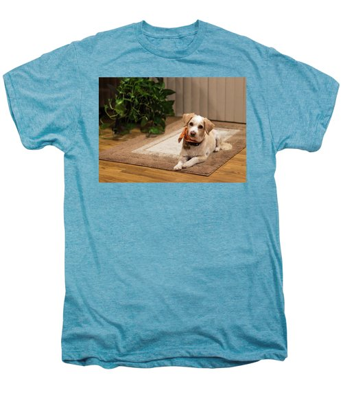 Portrait Of A Dog Men's Premium T-Shirt