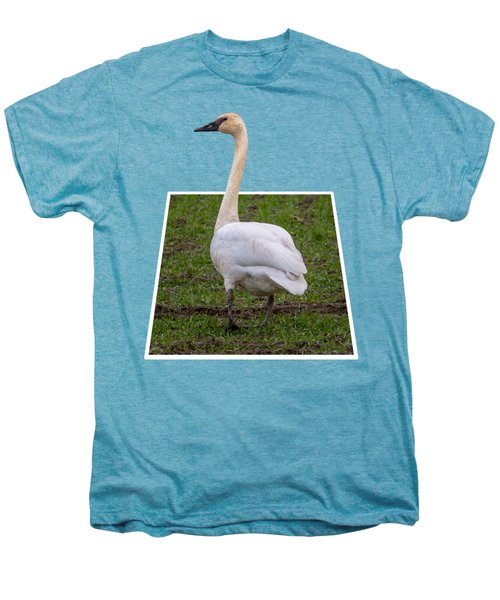 Portrait Of A Swan Out Of Frame Men's Premium T-Shirt