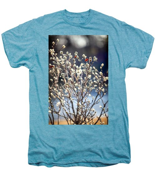 Pussy Willow Men's Premium T-Shirt
