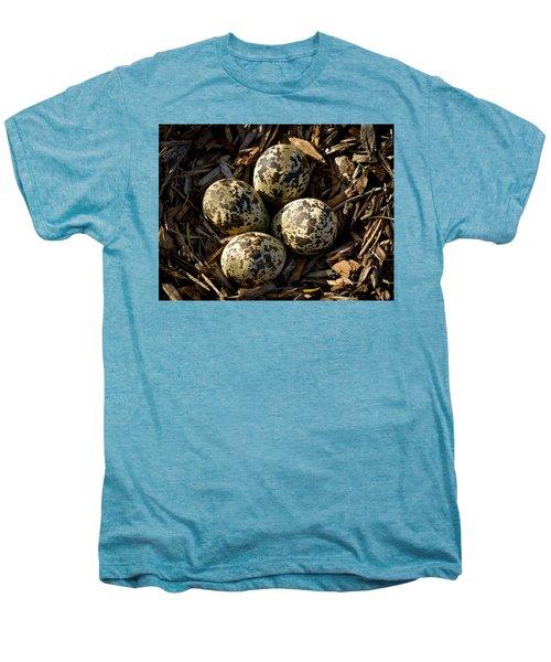 Quartet Of Killdeer Eggs By Jean Noren Men's Premium T-Shirt by Jean Noren