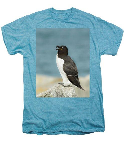Razorbill Portrait Men's Premium T-Shirt