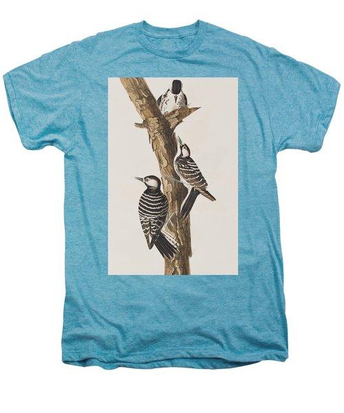 Red-cockaded Woodpecker Men's Premium T-Shirt by John James Audubon