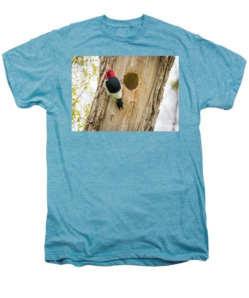 Red-headed Woodpecker At Home Men's Premium T-Shirt