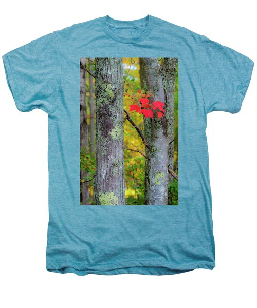 Red Leaves Men's Premium T-Shirt