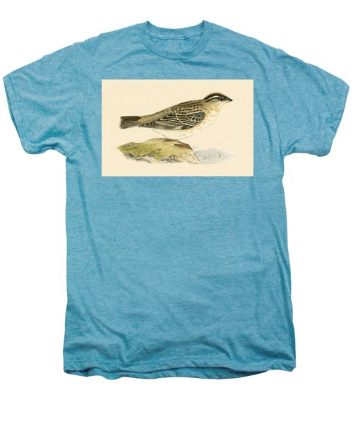 Rock Sparrow Men's Premium T-Shirt by English School
