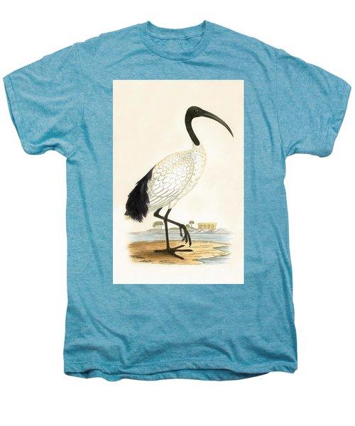 Sacred Ibis Men's Premium T-Shirt