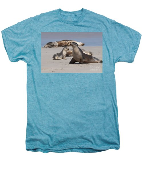 Men's Premium T-Shirt featuring the photograph Sea Lions by Werner Padarin
