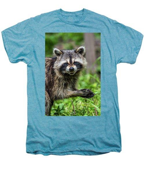 Smiling Raccoon Men's Premium T-Shirt by Paul Freidlund
