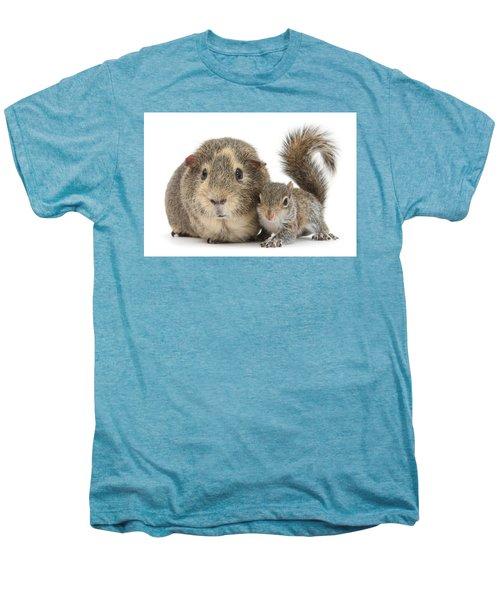 Squirrel And Guinea Men's Premium T-Shirt