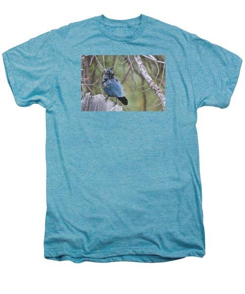 Men's Premium T-Shirt featuring the photograph Stellar's Jay by Gary Lengyel