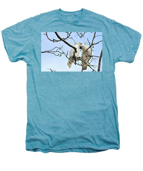 Sulphur Crested Cockatoos Men's Premium T-Shirt