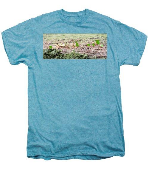 The Leaf Parade  Men's Premium T-Shirt by Betsy Knapp